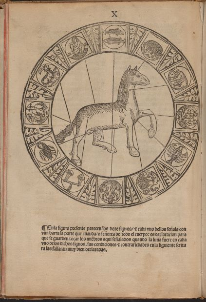 Image 1. Manuel Díez's Libro de albeyteria [Book of Veterinary Medicine]. (Zaragoza, 1495)